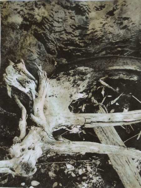 Wood River 37-001